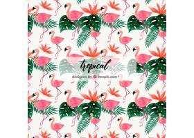 不同植物水彩画风格的热带图案_2242891