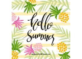你好夏天的背景五颜六色的菠萝_2141710
