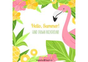 你好夏天的背景有火烈鸟和植物_2163019