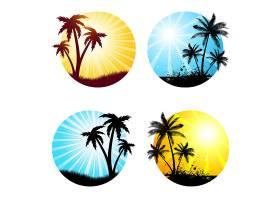 各种有棕榈树的夏景_895062