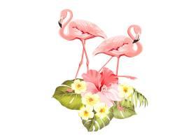 充满异国情调的花卉自然装饰品安全的夏季_10122977