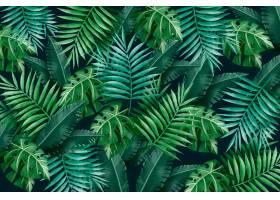 大片热带绿叶背景_7557471