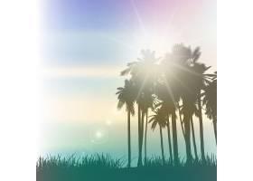 具有复古效果的棕榈树景观_897140