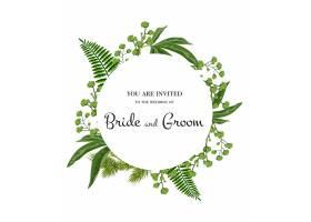 婚礼请柬在白色背景上用绿色植物在圆圈上_2768206