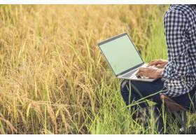 带着笔记本电脑的稻田里的农民_3738130