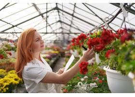 智能温室控制女工白天检查红花并记录数据_11177727