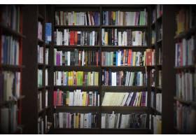 有书的图书馆_925672