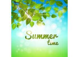 夏日的背景树枝上挂着新鲜的绿叶阳光炎_10703227