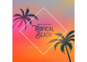 以棕榈树为背景的热带海滩_4725767