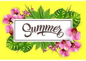 用热带树叶和兰花框住夏天的字样_2541727
