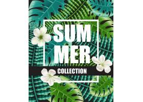 以鲜花和大叶为背景的夏日系列海报_2541706