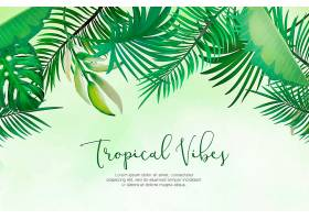 天然背景手绘热带树叶_5263430