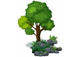 岩石上的绿树绿草_1909923