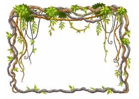 藤本植物枝条和热带树叶自由向量的框架_7627506