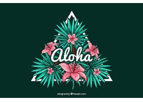 装饰三角形背景有夏威夷花朵和aloha_1174679