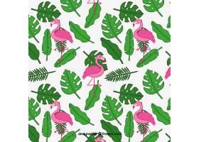 有植物和火烈鸟的热带夏季模式_2211521