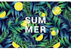 夏天的背景有植被和柠檬_2421253