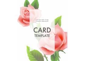贺卡模板粉红色玫瑰白色背景透明边框_2748329