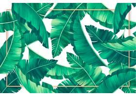 金色边框的热带树叶背景_4881845
