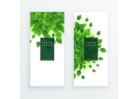绿叶垂直横幅背景_2414358