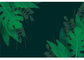绿色天然树叶缩放背景_9007079