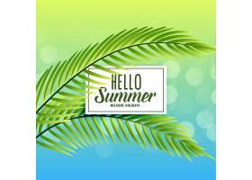 美丽的夏日背景热带树叶_4664778