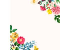美丽的花卉边框设计矢量_4043486