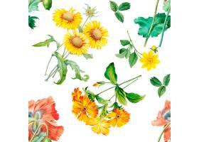 花卉图案背景_3904974