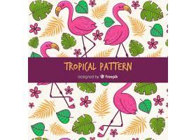 热带图案背景有花叶和火烈鸟_2879234