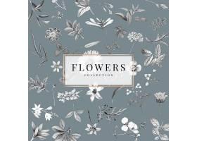 灰色背景上的花卉收藏_13311458