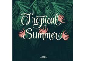 热带夏季背景_1140934