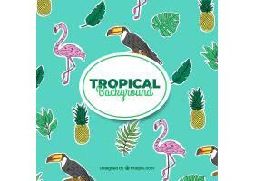 热带夏季背景有鸟类和植物_2200184