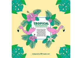 热带夏季背景火烈鸟和植物_2200183