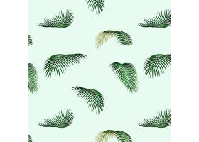 热带树叶图案插图_3904967