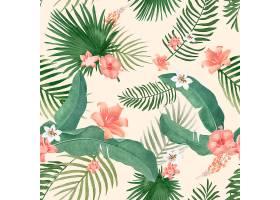 热带树叶插图_3755971