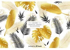 黑色和金色热带树叶背景_4256984