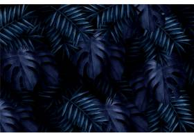 逼真的深色热带树叶壁纸_6389369
