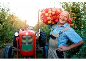 农场工人提着装满苹果水果的袋子的肖像_11139236