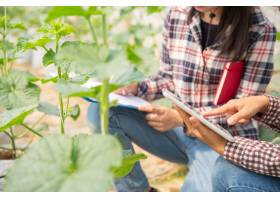 农学家在植物分析中检查农场农民和研究人_4668742