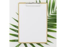 剪贴板的平铺概念_4109199