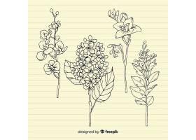 复古纸质背景上有叶子的植物_5445516