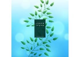 带有bokeh效果的蓝色树叶背景_2958424