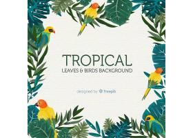 2D热带树叶和鸟类背景_4256943