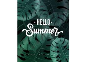 你好夏季特价上面写着热带树叶_2438680