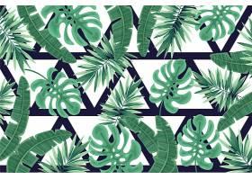 具有几何背景的热带树叶_8059443