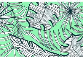 线形热带树叶以柔和的颜色为背景_7916456