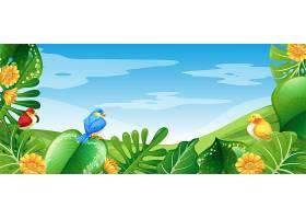 自然景观中的鸟类_3600495