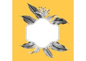热带植物模型插图_3755975