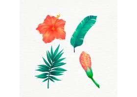 手绘热带花叶包装_7872350