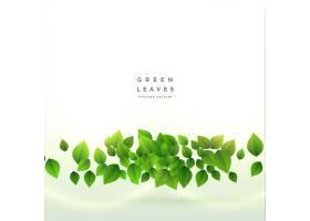 新鲜绿叶背景设计_4480863